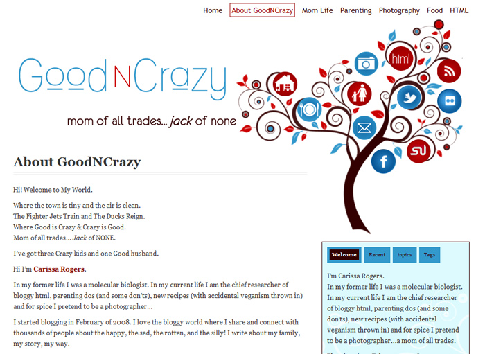 Good N Crazy - Customized Blog with custom illustration