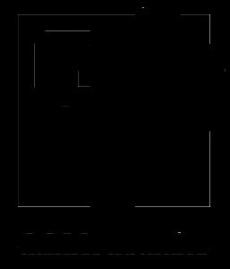 dslogo--blackwhite